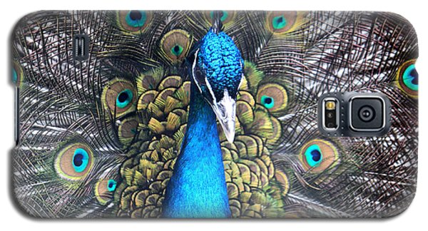 Indian Peacock Galaxy S5 Case