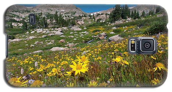 Indian Peaks Summer Wildflowers Galaxy S5 Case