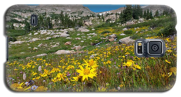Indian Peaks Summer Wildflowers Galaxy S5 Case