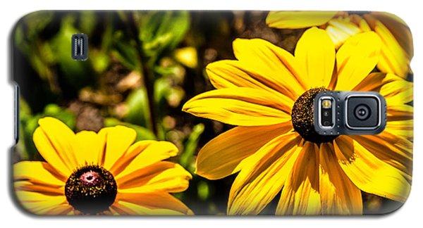 Indian Summer Gloriosa Daisy Galaxy S5 Case