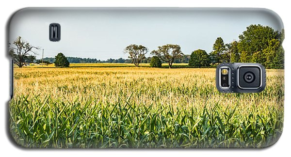 Indiana Corn Field Galaxy S5 Case