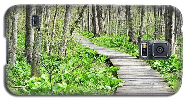 Indiana Dunes Great Green Marsh Boardwalk Galaxy S5 Case