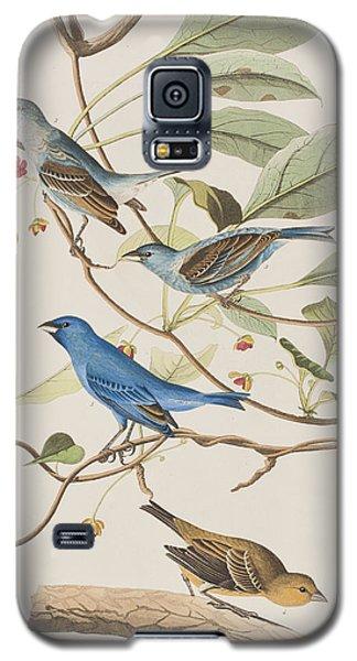 Indigo Bird Galaxy S5 Case by John James Audubon