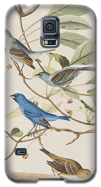 Indigo Bird Galaxy S5 Case