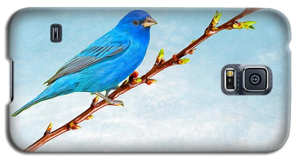 Bunting Galaxy S5 Case - Indigo Bunting by Laura D Young
