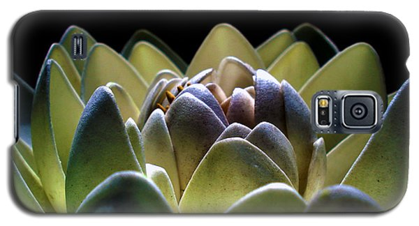 Indonesian White Lotus Galaxy S5 Case