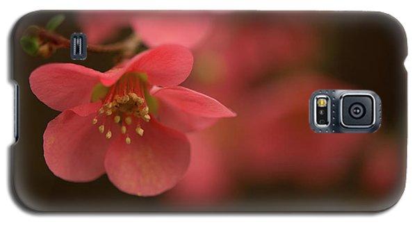 Infinite Pink Galaxy S5 Case