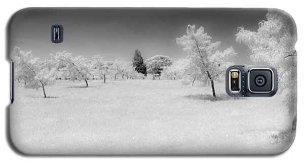 Infrared Peach Orchard Galaxy S5 Case