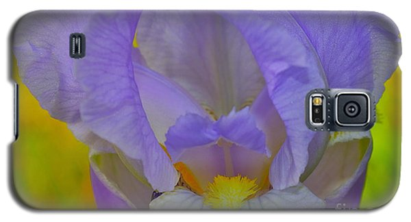 Inner Beauty Galaxy S5 Case by Alice Mainville