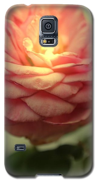 Inner Glow Galaxy S5 Case by Betty Northcutt