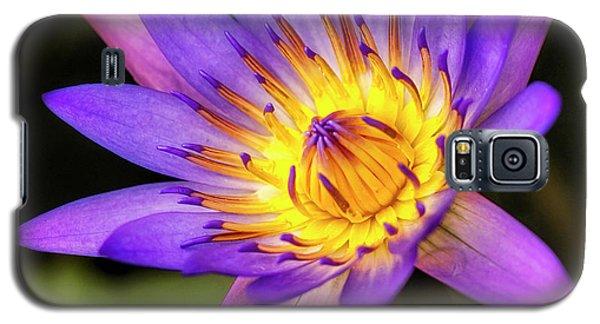 Inner Glow Galaxy S5 Case