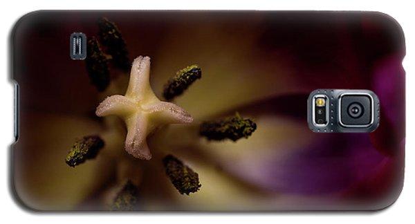 Inner Self Galaxy S5 Case