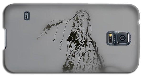 Innner  Mist Galaxy S5 Case