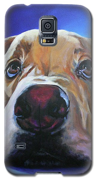 Innocent Galaxy S5 Case