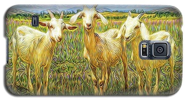 Innocent Wisdom Galaxy S5 Case by Joel Bruce Wallach