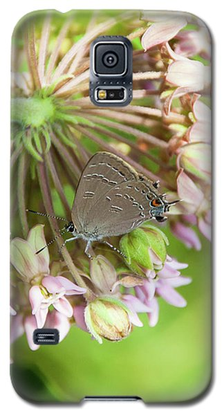 Inp-1 Galaxy S5 Case