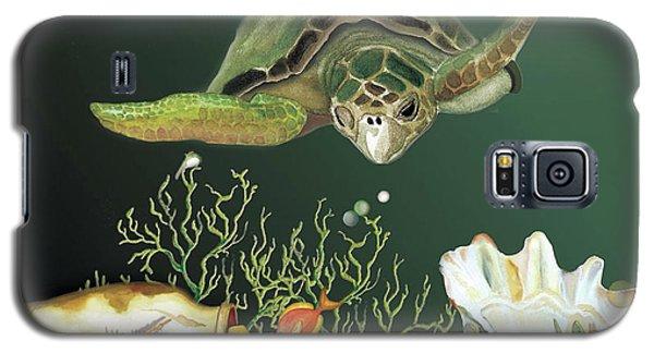 Inquisitive Turtle Galaxy S5 Case
