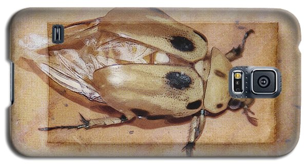 Insect On Wooden Board Galaxy S5 Case