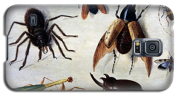 Insects, 1660 Galaxy S5 Case