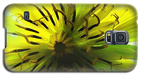 Inside A Yellow Goatsbeard  Galaxy S5 Case