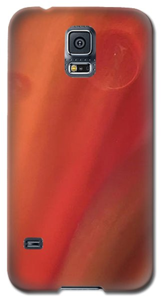 Inside Jupiter, Artists Rendition Galaxy S5 Case