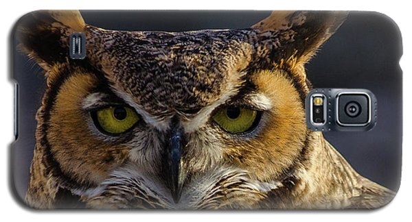 Intense Owl Galaxy S5 Case