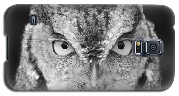 Galaxy S5 Case featuring the photograph Intense Stare by Richard Bryce and Family