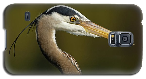 Intensity Of A Heron Galaxy S5 Case