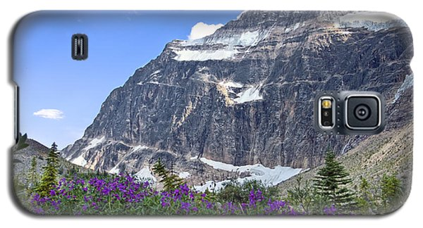 Interpretive Apps In The Canadian Rockies Galaxy S5 Case