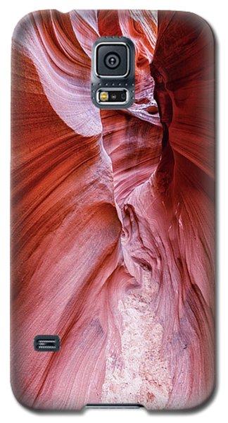 Intertwine  Galaxy S5 Case