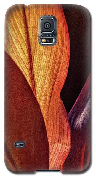 Interweaving Leaves I Galaxy S5 Case
