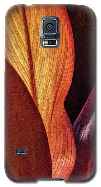 Interweaving Leaves I Galaxy S5 Case