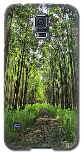 Galaxy S5 Case featuring the photograph Into The Forest by DJ Florek