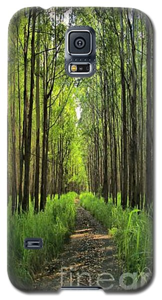 Galaxy S5 Case featuring the photograph Into The Forest I Go by DJ Florek