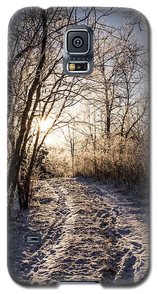 Galaxy S5 Case featuring the photograph Into The Light by Annette Berglund