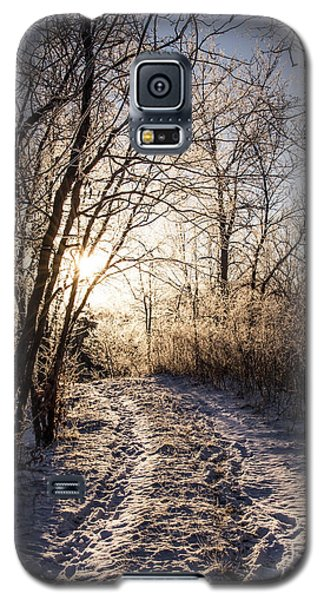 Into The Light Galaxy S5 Case by Annette Berglund