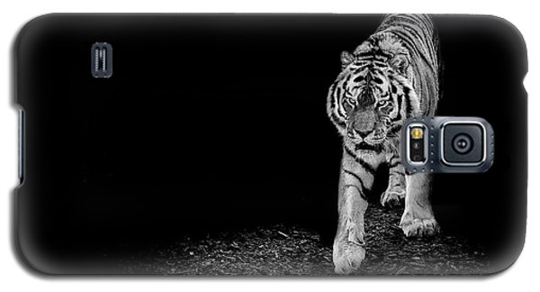 Tiger Galaxy S5 Case - Into The Light by Paul Neville