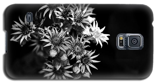 Into The Light Galaxy S5 Case by Silke Brubaker