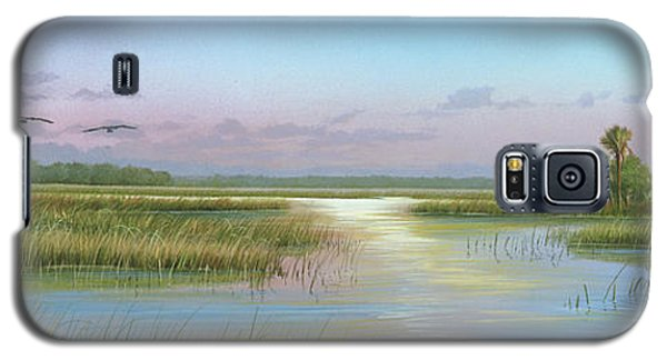 Intracoastal Glimmer Galaxy S5 Case by Mike Brown