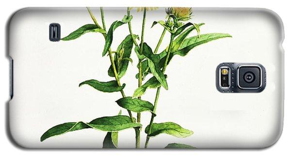 Inula Galaxy S5 Case