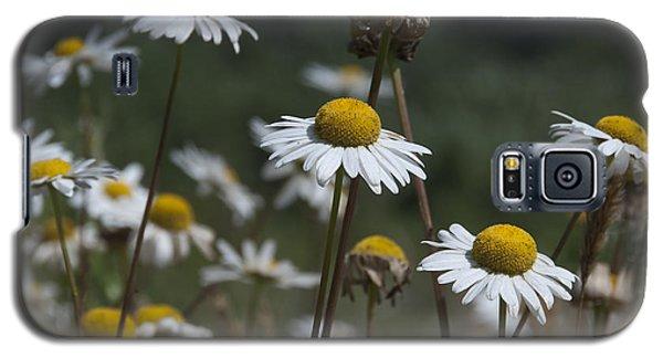 Invasive Galaxy S5 Case