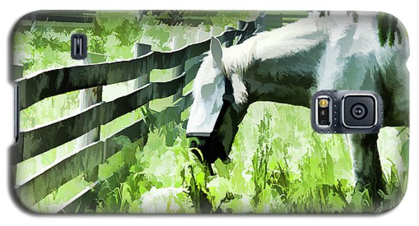 Iowa Farm Pasture And White Horse Galaxy S5 Case by Wilma Birdwell