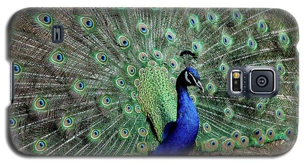 Iridescent Blue-green Peacock Galaxy S5 Case by LeeAnn McLaneGoetz McLaneGoetzStudioLLCcom