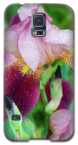 Iriis After Rain Galaxy S5 Case