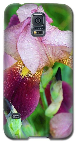 Iriis After Rain Galaxy S5 Case