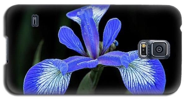Iris #2 Galaxy S5 Case