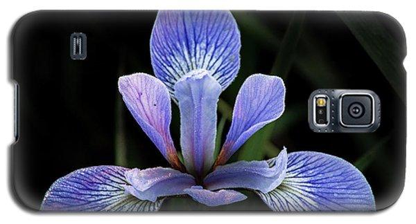 Iris #4 Galaxy S5 Case