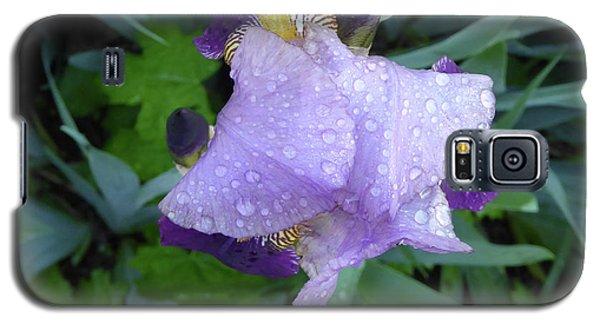 Iris After The Rain IIi Galaxy S5 Case