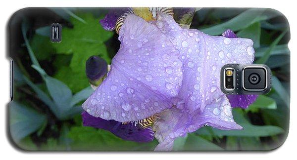 Iris After The Rain IIi Galaxy S5 Case