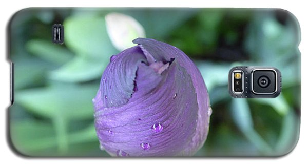 Iris After The Rain V Galaxy S5 Case
